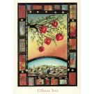 Pomegranates Over Jerusalem - Box of 10 Cards